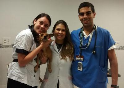 toto com os veterinarios (2)